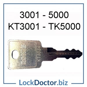 3001 to 5000 RONIS France replacement keys cut by code from lockdoctorbiz
